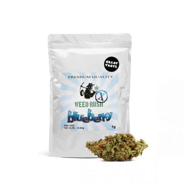 Weed Rush - Blueberry CBD Flowers 1gr