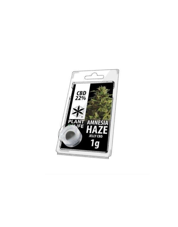 Plant of Life | Jelly CBD Amnesia Haze 22% - 1g