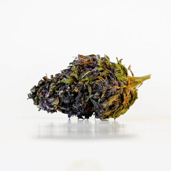 Canna-X Cannabis Flowers Purple Gelato Premium Series – 2gr. Bud Photo of 30% Cannabidiol CBD.