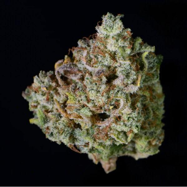 Fast Buds | Autoflowering Cannabis Seeds - Gelato Auto – flower pic - 2