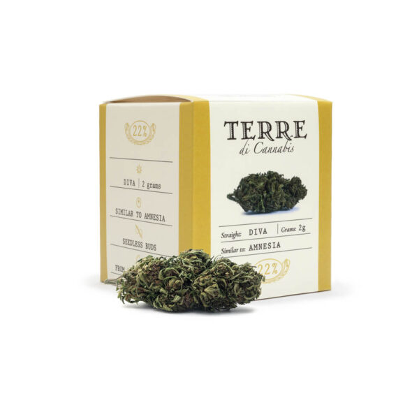 Terre Di Cannabis Diva - 2gr. - product photo with bud - 2