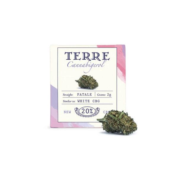 Terre Di Cannabis Fatale CBG - 2gr. - package photo