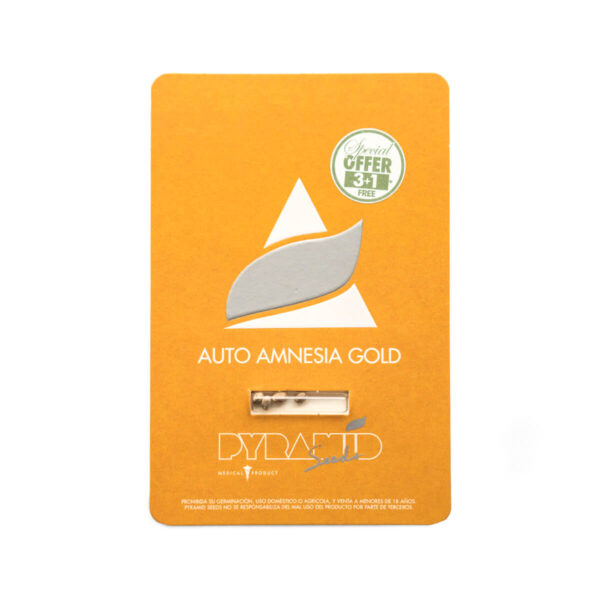 Pyramid Seeds | Autoflowering Cannabis Seeds – Auto Amnesia Gold – 3+1pcs - Packaging photo