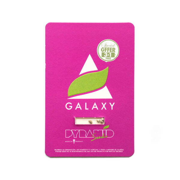 Pyramid Seeds | Feminized Cannabis Seeds – Galaxy – 3+1pcs - packaging photography