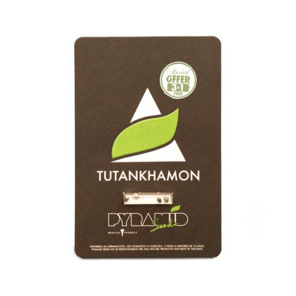 Pyramid Seeds | Θηλυκοί Σπόροι Κάνναβης – Tutankhamon – 3+1τεμ - φωτογραφία συσκευασίας