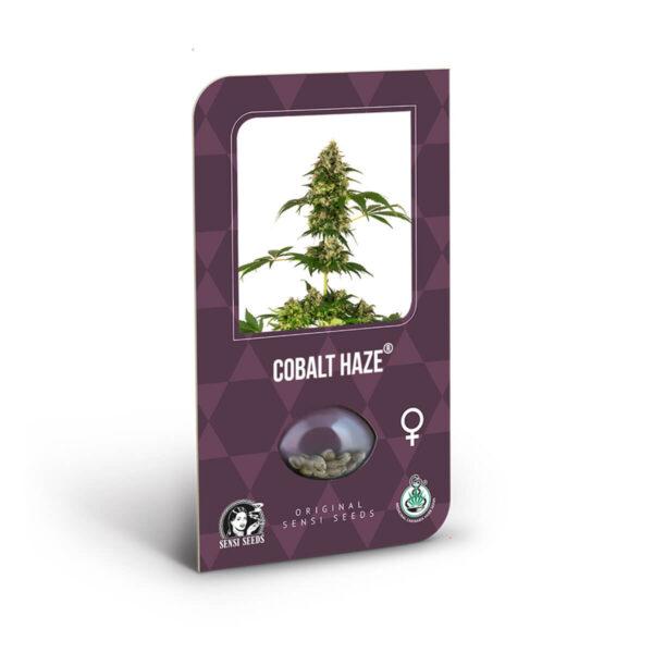 Sensi Seeds | Feminized Seeds - Cobalt Haze Cannabis Seeds.
