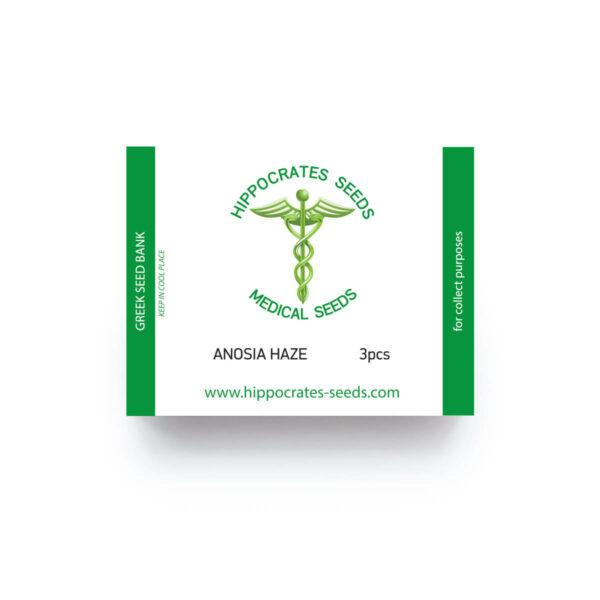 Hippocrates Seeds | Anosia Haze Auto Ελληνικοί σπόροι κάνναβης με THC και CBD αυτόματης ανθοφορίας.